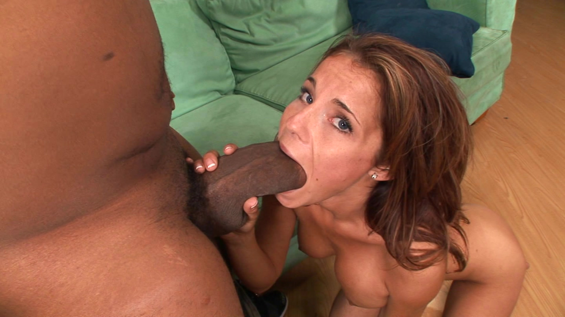 shemale porn free sex video
